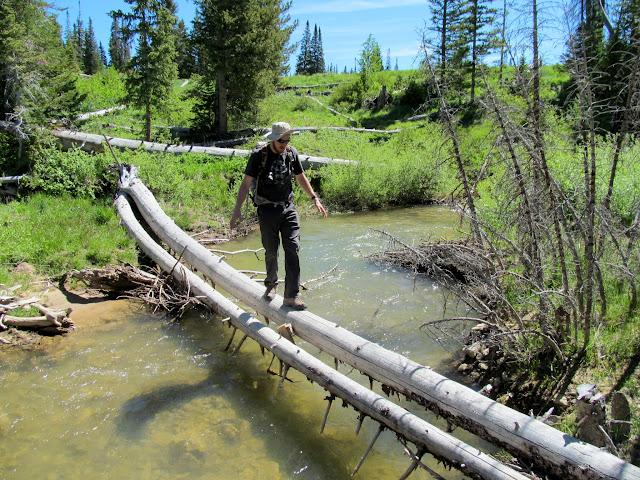 Chris crossing Lowry Water on a fallen tree