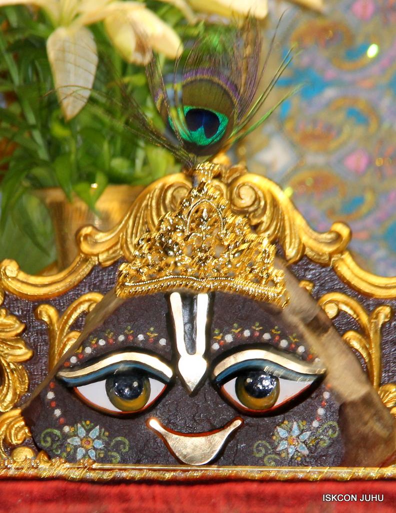 ISKCON Juhu Mangal Deity Darshan on 24th Oct 2016 (26)