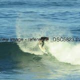 _DSC5823.thumb.jpg