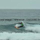 _DSC2390.thumb.jpg