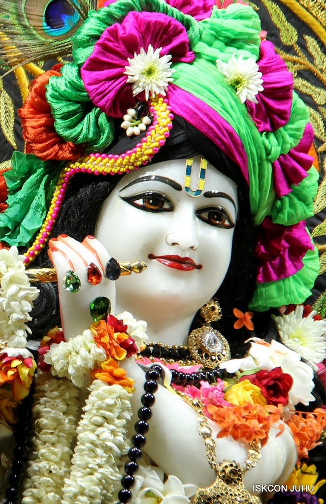 ISKCON Juhu Sringar Deity Darshan on 4th June 2016 (12)