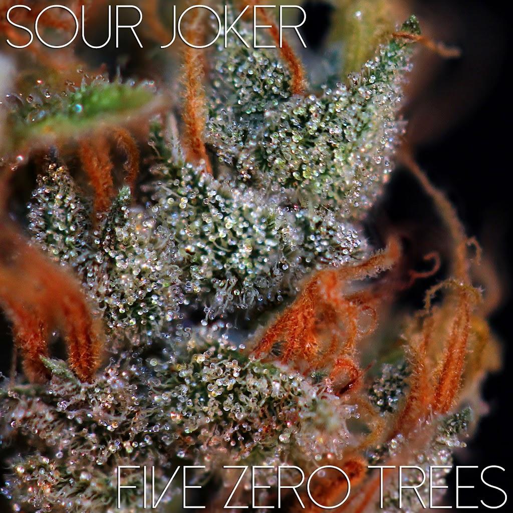 Sour Joker Macro