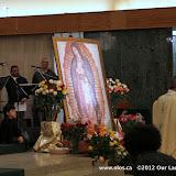 La Virgen de Guadalupe 2011 - IMG_7436.JPG