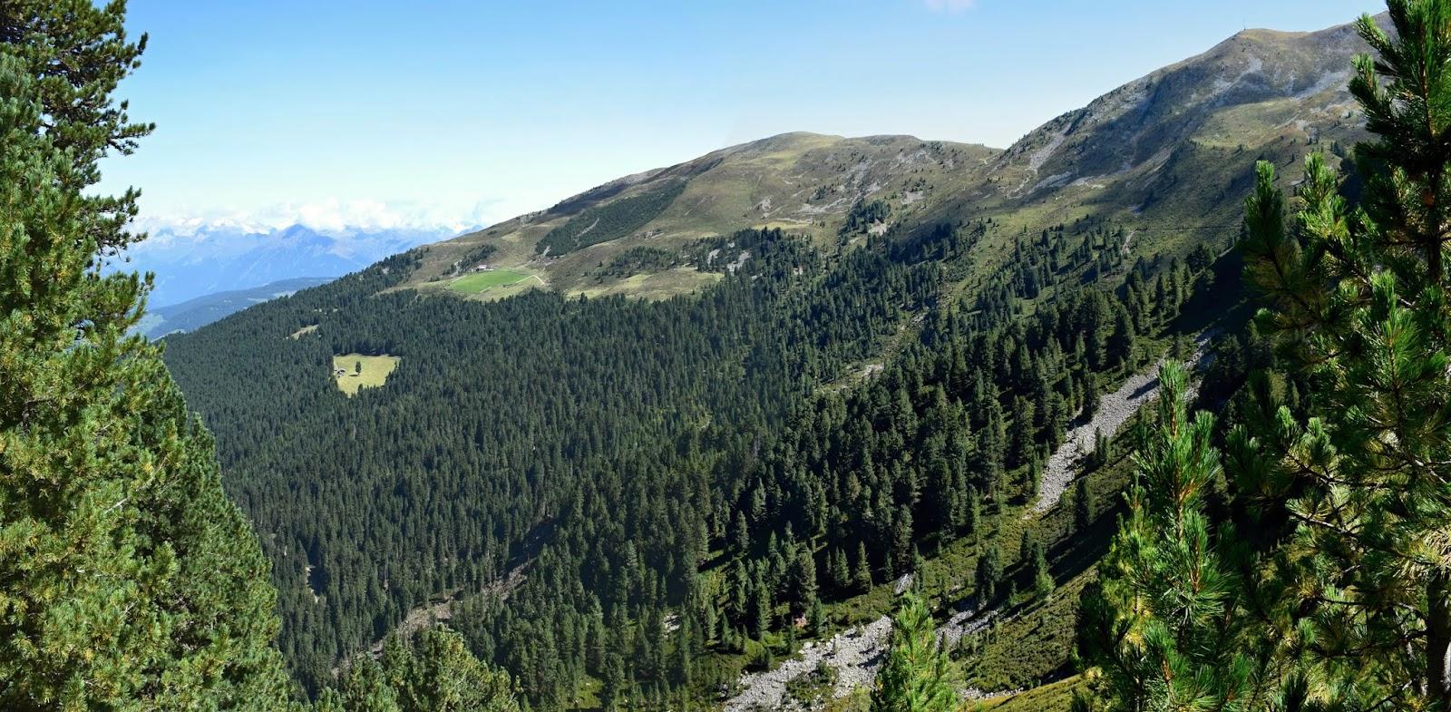 22.8. Z Brixen Plose, Rossalm -17.jpg