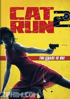 Sát Thủ Mèo Hoang 2 - Cat Run 2 (2014) Poster