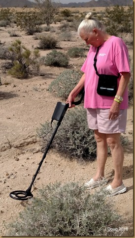 Dolly with metal detector
