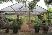 Kecamatan Cipondoh Sukses Membangun Kampung Saungkuriang Sebagai Paru-Paru Cipondoh