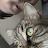 Anthe Sevenants avatar image