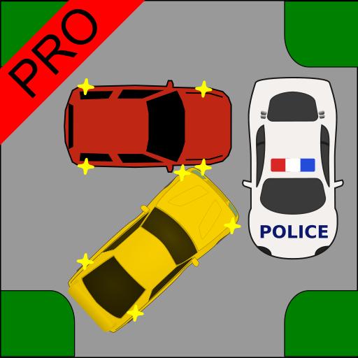 Driver Test: Crossroads Pro Icon