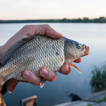 20150617_Fishing_Oleksandriya_023.jpg