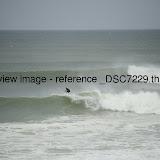 _DSC7229.thumb.jpg