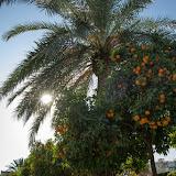 ESM Taize w Walencji - IMG_5160.jpg