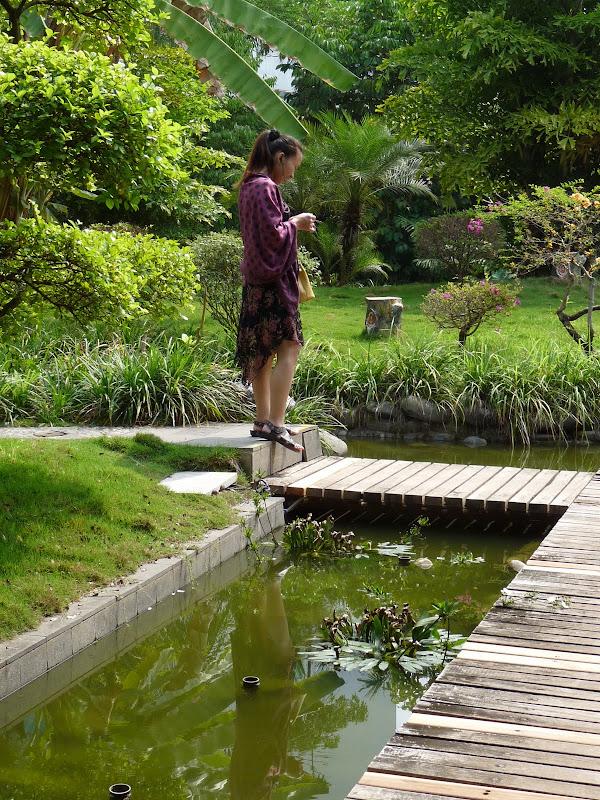 Chine .Yunnan . Lac au sud de Kunming ,Jinghong xishangbanna,+ grand jardin botanique, de Chine +j - Picture1%2B532.jpg