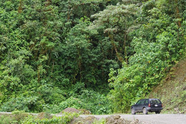 Quebrada. Piste de Gualchan à Chical, 1600 m (Carchi, Équateur), 3 décembre 2013. Photo : J.-M. Gayman