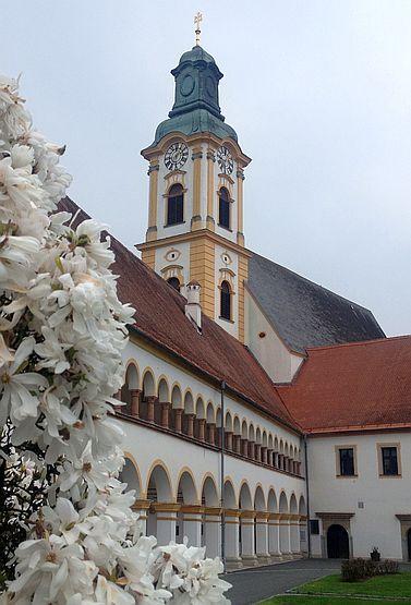Blüten am Chorherren-Stift von Reichersberg