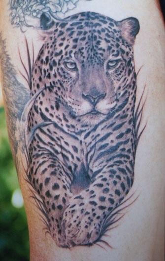 Leopard #5