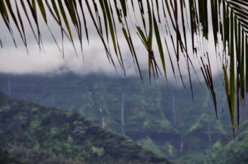 06-26-13 National Tropical Botantial Gardens - IMGP9444.JPG