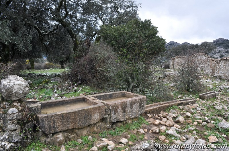 Benaocaz - Mitano - Casa de Fardela - Pajaruco