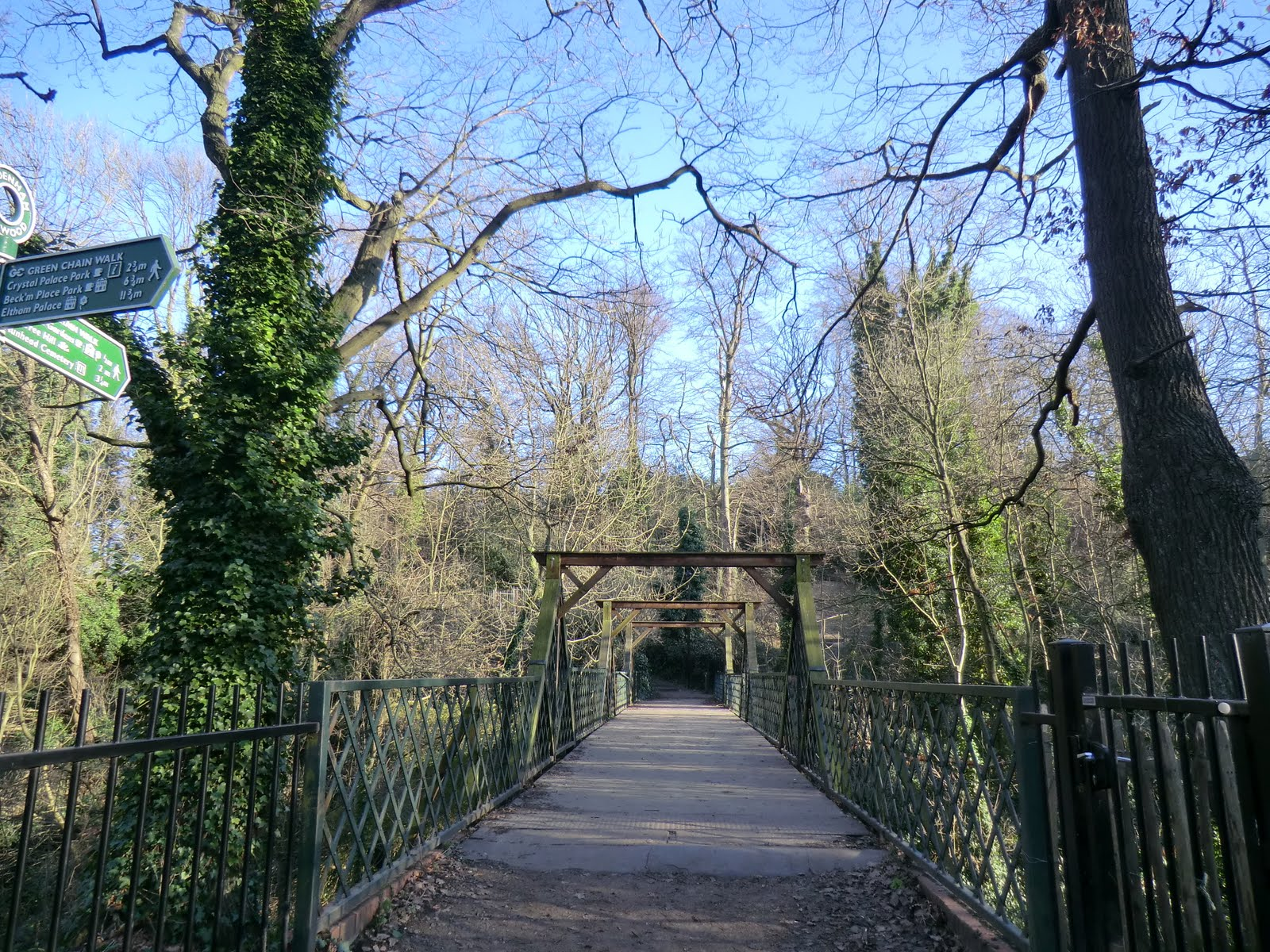 CIMG1610 Cox's Walk Footbridge, Sydenham Hill Wood