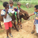 Campaments Estiu Cabanelles 2014 - IMG_0055.JPG