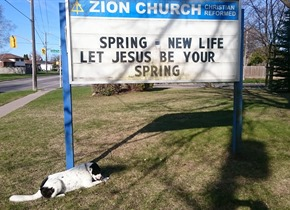 Zion Christian Reformed Church sign in Oshawa