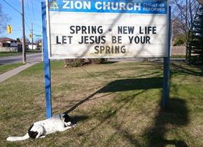 Zion Christian Reformed Church sign in Oshawa