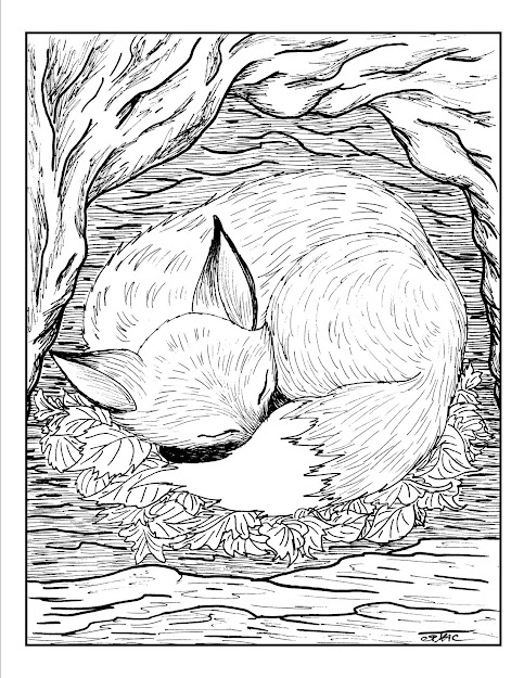 Free Adult Coloring Pages  Fox Coloring Page