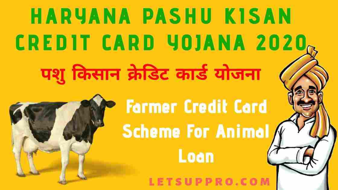 Haryana Pashu Kisan Credit Card Yojana 2020