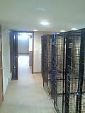 This a brand new kennel built from the floor to the ceiling