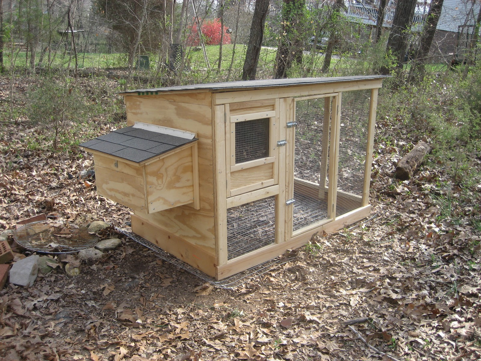 Backyard Farming: A Look at a Coop