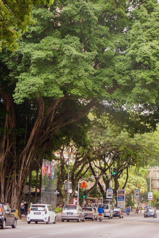 Коала Лумпур