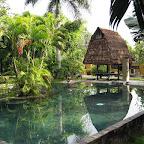 Pondok Sari swimmingpool (Pemuteran, North Bali)