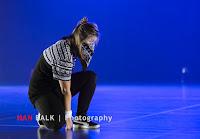 Han Balk Voorster Dansdag 2016-4961-2.jpg