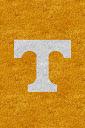 Tennessee%252520Volunteers%252520Orange.jpg