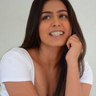Samyuktha Hegde Photoshoot (61).jpg