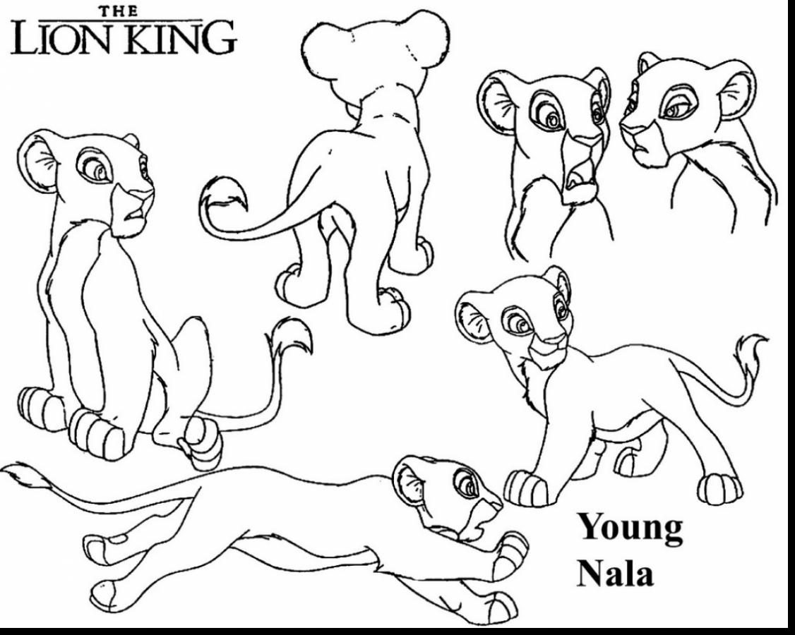 Lion King Color Pages Simple Lion King Kovu Coloring Page With