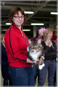 cats-show-24-03-2012-fife-spb-www.coonplanet.ru-070.jpg