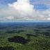 Preservação da Amazônia requer pesquisa, transparência de dados e nova economia baseada na biodiversidade