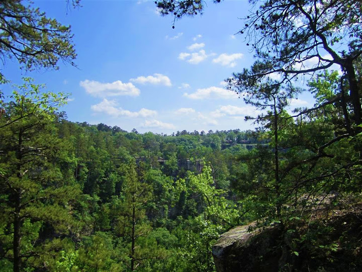 Cedar Canyon from Rock House Cave Trail