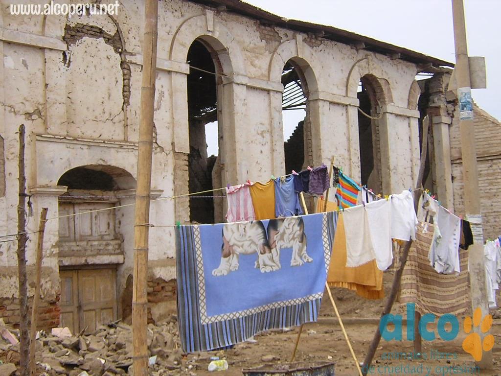 Asistencia Hualcara Cañete terremoto 2007 (2)