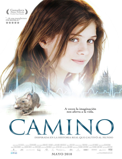 Camino - Nhà Báo Camino