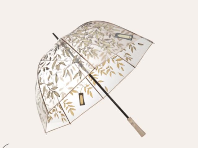Daily Pic – Regenschirm von Dorohee Schumacher