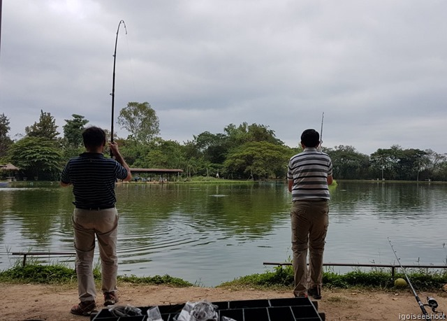 catching the giant Mekong Catfish at Bo Sang Fishing Park, under the guidance of a fishing expert.