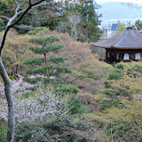 2014 Japan - Dag 8 - marjolein-IMG_1182-0075.JPG