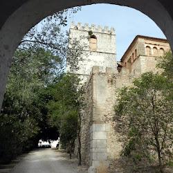Gandia: St. Jeroni, la Col·legiata, el Palau Ducal i els Borja – 12.6.16