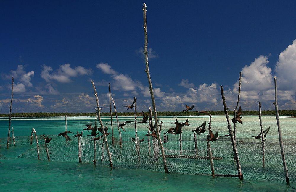 mataiva-atoll-8