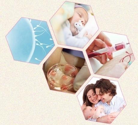 مركز الياسمين للخصوبة والمساعدة على الإنجاب بمستشفى الياسمين بالمعادي