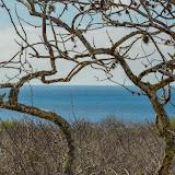 galapagos - Galapagos_FB_2-158.jpg