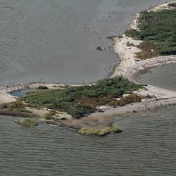 Cat Island Sept 27, 2013 109 (2)