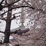 2014 Japan - Dag 5 - marjolein-DSC03530-0017.JPG